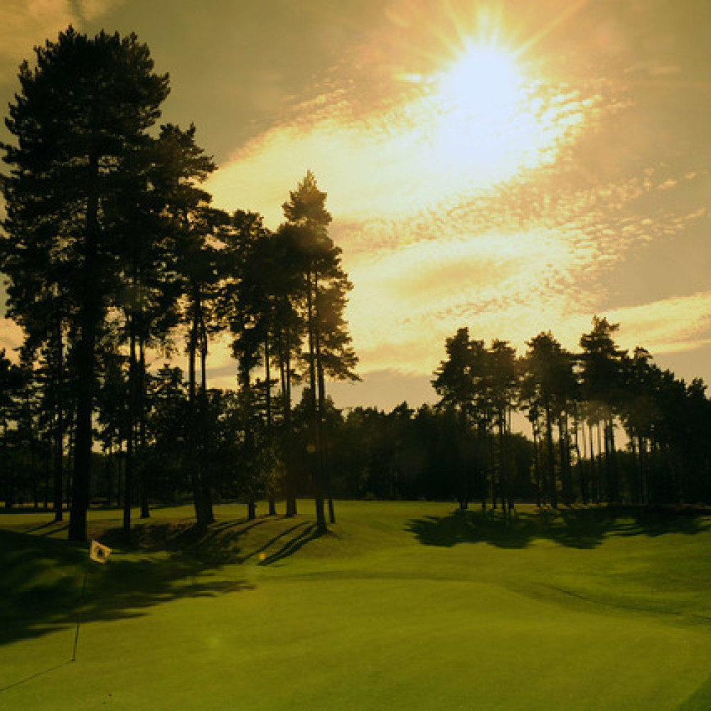 Golf365 Review: Natural Beauty and Great Sport at Forest Pines